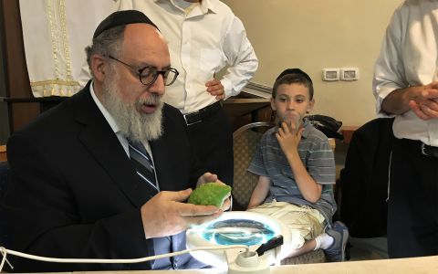 Rav Checking Etrog